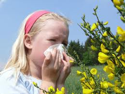 allergia_anoixi