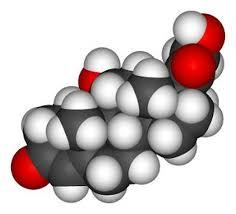 kortizoni_diatrofi