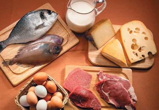 proteines_diet
